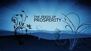 prosperityseeds